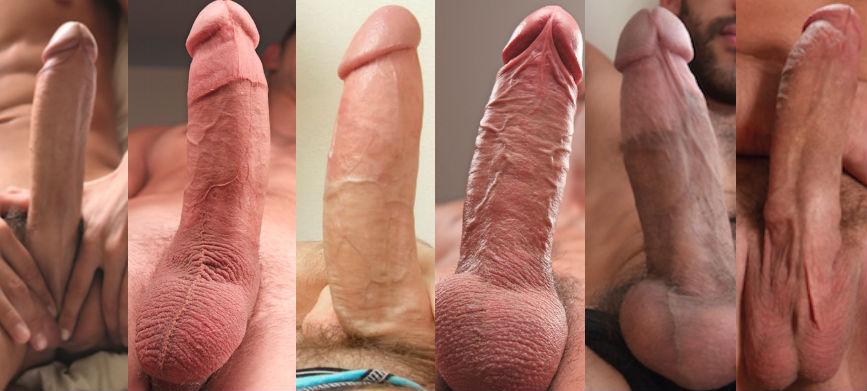gay porn cocks 2