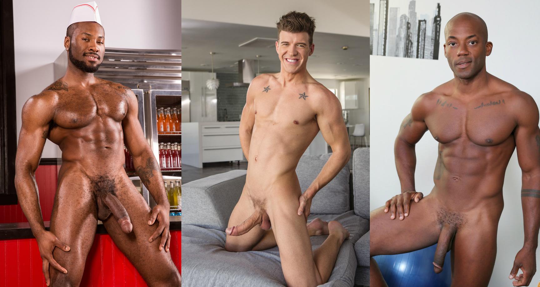 cocks gay porn