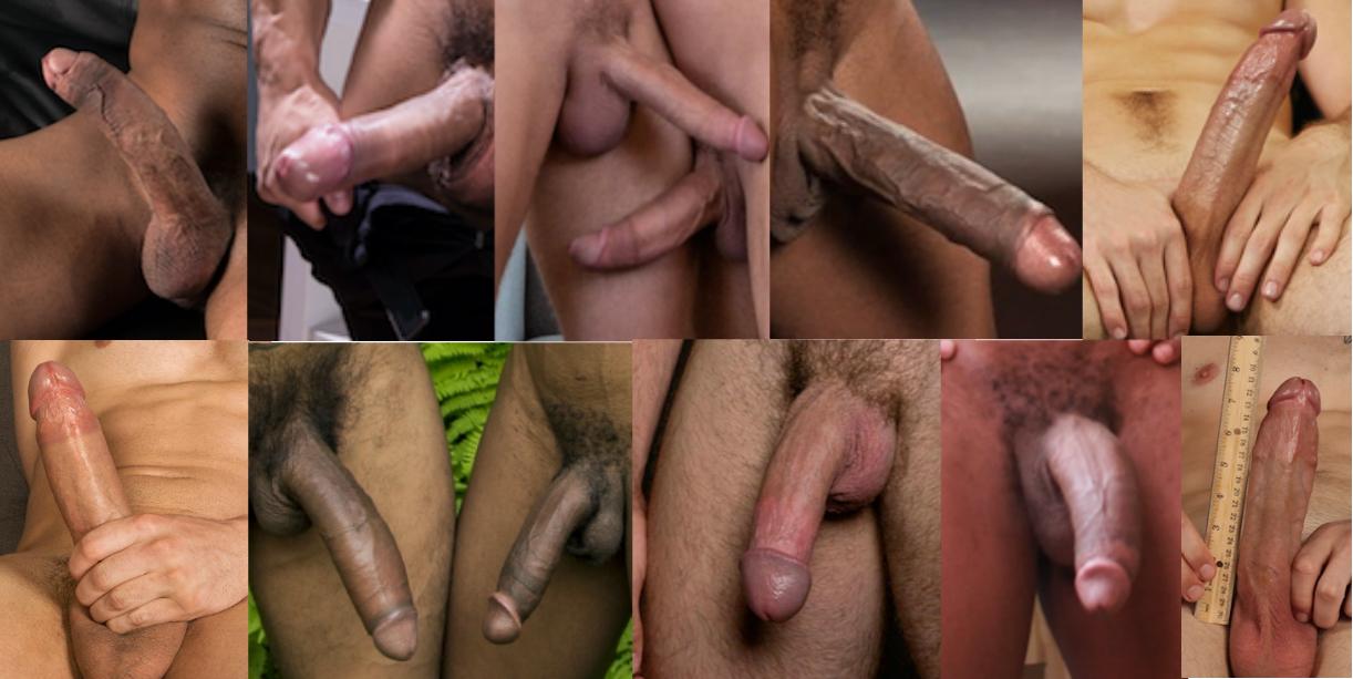 best gay porn cocks