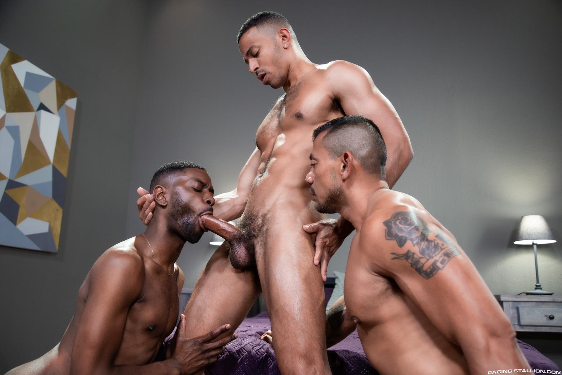zario travezz gay porn